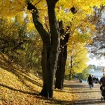 Четири совети како да ја преживеете есента