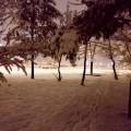 Бекири  Груевски беше избркан од Градскиот парк