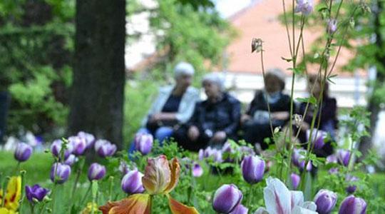 ВМРО ДПМНЕ  Над 300 000 пензионери нема да го добијат планираното покачување на пензиите