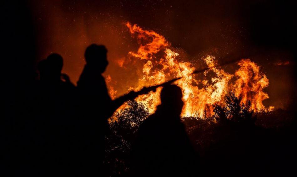 МЗШВ работи со полн капацитет  министерот е на своето работно место  будно се следи состојбата со пожарите