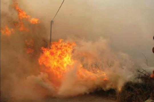 Три пожари вчера во Крива Паланка