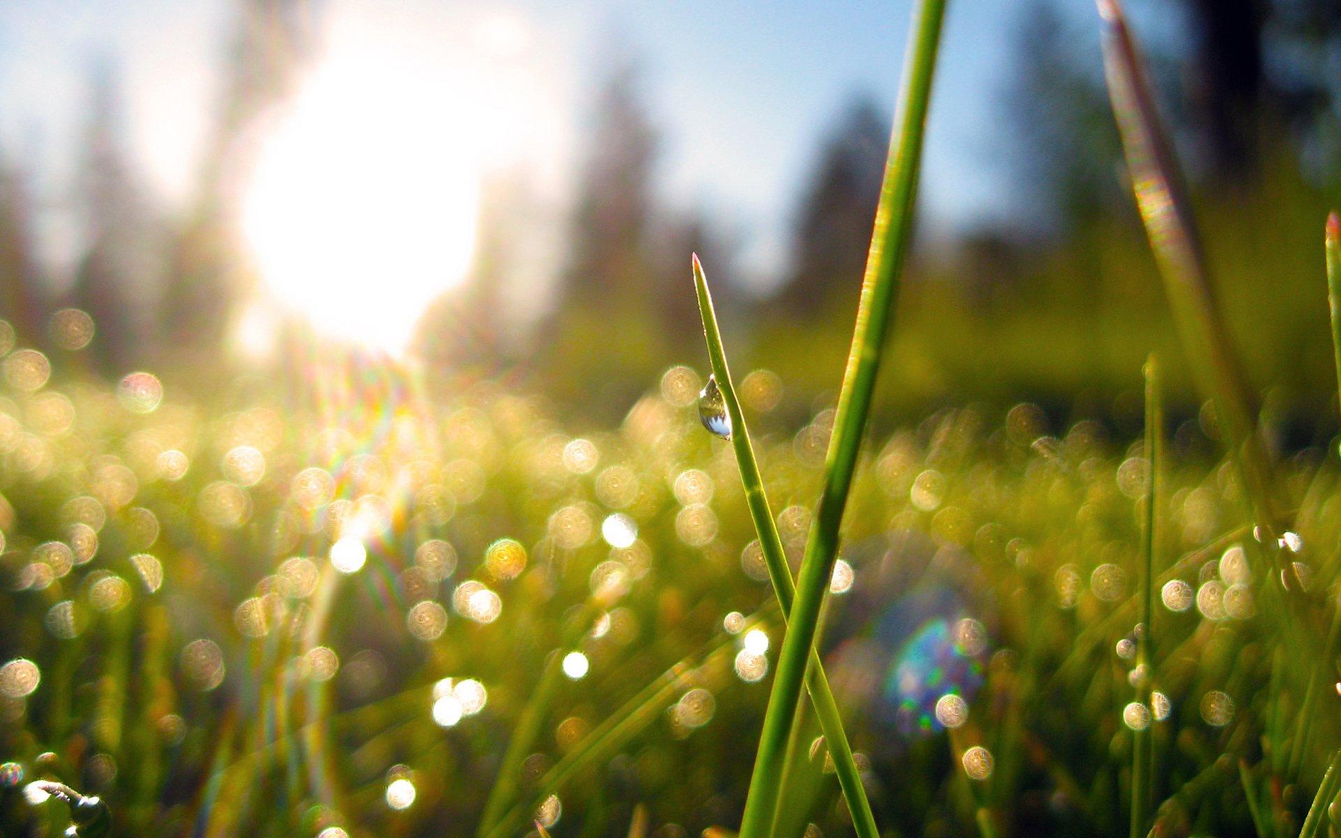 Свежо утро и пораст на дневната температура