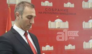 Груби  Со Законот за јазиците ќе добие Македонија  а ќе се релаксираат меѓуетничките односи