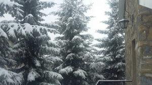 Од утре заладување и снег