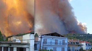 Нов шумски пожар во Грција, евакуирани четири села